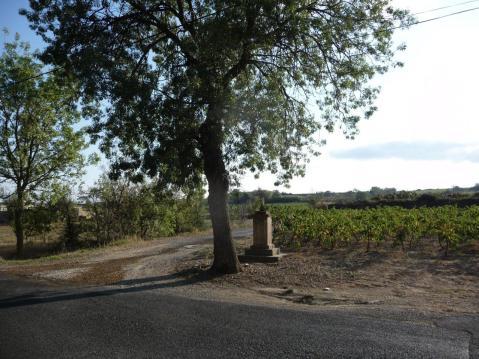 Pinet - Mas de Tondu - D161E (2)