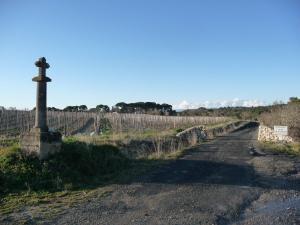 Montagnac - La Grangette (1)