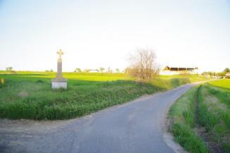 Florensac - Croix de Gély - Chemin de Saint-Martin (3)