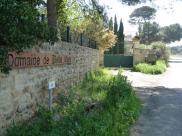 Mèze - Domaine de Belle Mare - Chemin des Salins - D18 (2)