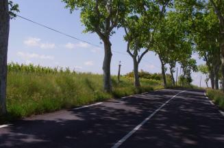 Espondheillan - la Croix de Fer - Route de Béziers - D15 (4)