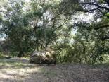 Lamalou - ND de Capimont - Chemin de Croix