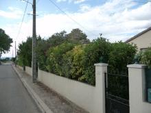 St-Bauzille-de-la-Sylve - 26 avenue de Popian D131 (3)
