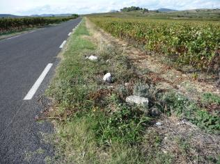 Paulhan - Route d'Adissan D30_2 (2)
