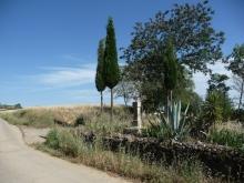 Caux - Mas d'Aubagnac - Chemin de la Mountade (1)